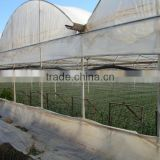 Blowing molding, multi-span, Tunnel PE material, agricultural greenhouse film manufacturer