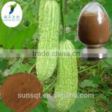 Natural Bitter gourd / Momordica charantia / Bitter Melon extract powder for Loose weight
