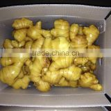 China Organic Ginger Dried Ginger Supplier