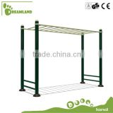 Outdoor Double Trapeze Monkey bar Horizontal Ladder