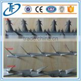 high quality and hot sale Electro Galvanised Wall Spikes,Razor Spike,High Quality Anti Climb Spikes