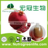 bulk supply Pomegranate Hull Extract /40% Ellagic acid by HPLC