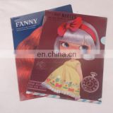 file folder Type and PP Material file folder
