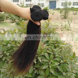 Free Sample Hair Bundles Grade 100 Human Hair High Quality Silky Straight Virgin Brazilian Hair Weave