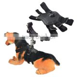 New Dog Chest Harness Mount For SJ4000 Cameras Various Sports Cameras Strong PVC Material and Carbon Fiber