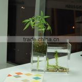 wholesale clear square acrylic fish aquarium tank with flowerpot,mini desktop acrylic fishbowl/flower vase