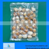 Good quality vacuum boiled shell clam