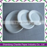 biodegradable tablewares,sugar cane pulp tableware,disposable biodegradable food container