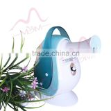 Lastest new Personal design Handheld Nano Mister / Beauty Care Facial Steamer