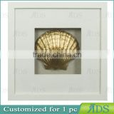 Modern Art Home Decoration Art Unique Seashell Shadow Boxes