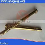 China fastener high strength? fastener ceiling anchor bolt