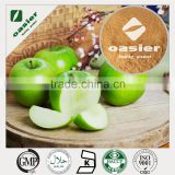 Wholesale Price Factory supplier Natural Plant Extract GMP ISO Kosher Natural Organic Apple Extract