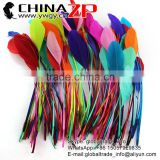 ZPDECOR Factory Bulk Sale Top Selling Beautiful Natural Colored Mix Colors Stripped Goose Feathers for Sale
