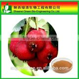 Hawthorn berry extract powder food supplement