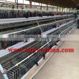 TAIYU Foreign Agent A Type 3/4 Tiers Chicken Layer Cage for Sale Visit Customers Every Year