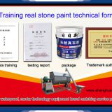 real stone paint formula