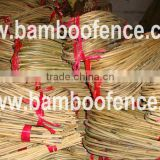 Hooped Bamboo Ladder