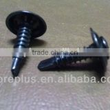 Made in Taiwan Steel Stainless Steel Copper TRIM OVAL HEAD PHIL WITH SPECIAL WASHERSELF DRILLING SCREW