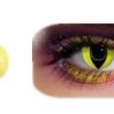 New Arrival Yellow Cat Eye Crazy Contact Lens