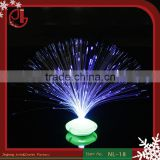 LED Flower Fibre Optic Light Lamp Optical Fiber Colorful Night Light Indoor Home Decoration