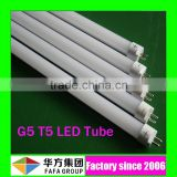 t5 light fixtures animal tube free hot sex t5 led tube www led tube vw t5