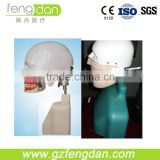 Good quality senior type I dental manikin for simulation