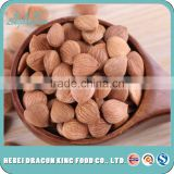 bulk buy from China raw apricot seeds sweet or bitter for food companies with top quality