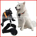 Digital Mini Pet Cam Camera Collar Video Trace DVR Monitor Behavior Dog Cats