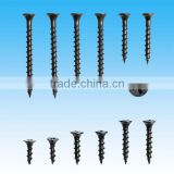 High Quality Collated Drywall Screws From Guangzhou Supplier