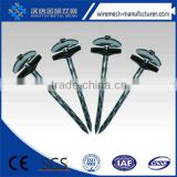 Competitive price umbrella head roofing nails directly manufacturer                                                                         Quality Choice