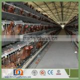 Trade Assurance 2m 3 Tier 96 Birds Poultry House Equipment sales06@chinafencefactory.com