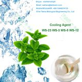 Taima Factory Wholesale Food Grade Koolada Ws-23 Powder mint Persistent Cooling Sensation London
