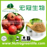 2015 for health and beauty 100% Pure natural plant extract Hawthorn Berry extract