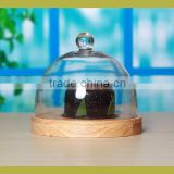 Glass cupcake stand with dome cover