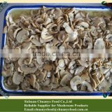 Canned Champignon Mushroom PNS