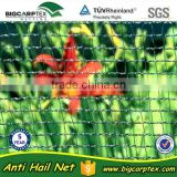 (20 years factory,Shanghai) 50grm vineyard Hail protection net