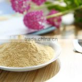 Barley malt extract with best lower price