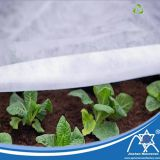 Anti-UV Breathable PP Spun-Bonded Non-Woven Mulch Film