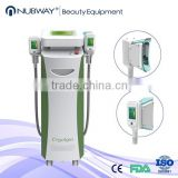 Safe Effective Criolipolisis Equipment / Cryo Therapy Weight Loss Machine