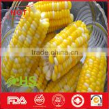 Frozen organic sweet corn from China