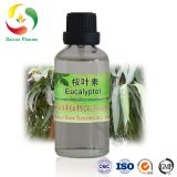 Eucalyptus Essential Oil 99% Cineole Eucalyptol best price manufacturer Natural