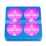 red/blue/ white/UV Emitting Color SP600 Full Spectrum LED Grow Light for Indoor Plant Growing