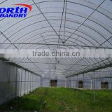 Greenhouse Vegetable Anti Insect Net
