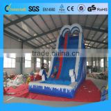 2014 the Alien inflatable water slide, inflatable water slide from China , cheap inflatable slide