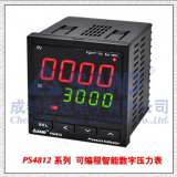PS4812/PS4812TProgrammable Intelligent Pressure Indicator