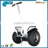 19 inch 48v self balancing electric chariot scooter 1000W outdoor China electric chariot