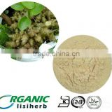 100% Natural panax notoginseng (sanqi )Extract with low price