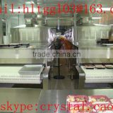 tunnel type continuous processing microwave sterilizing equipment for food