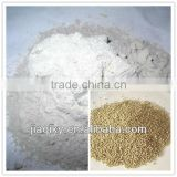 micronized calcium carbonate -nano caco3