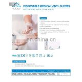 Disposable Gloves Protective Hand PVC Safety Gloves Size S-XL